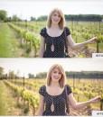 Vineyard-B&A
