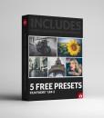 5 FREE PRESETS