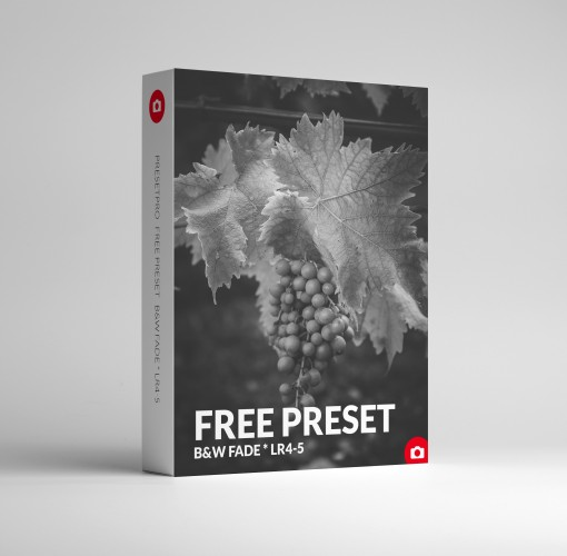 Free Lightroom Preset B&W Fade
