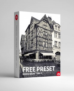 Free Lightroom Preset Warm Black & White