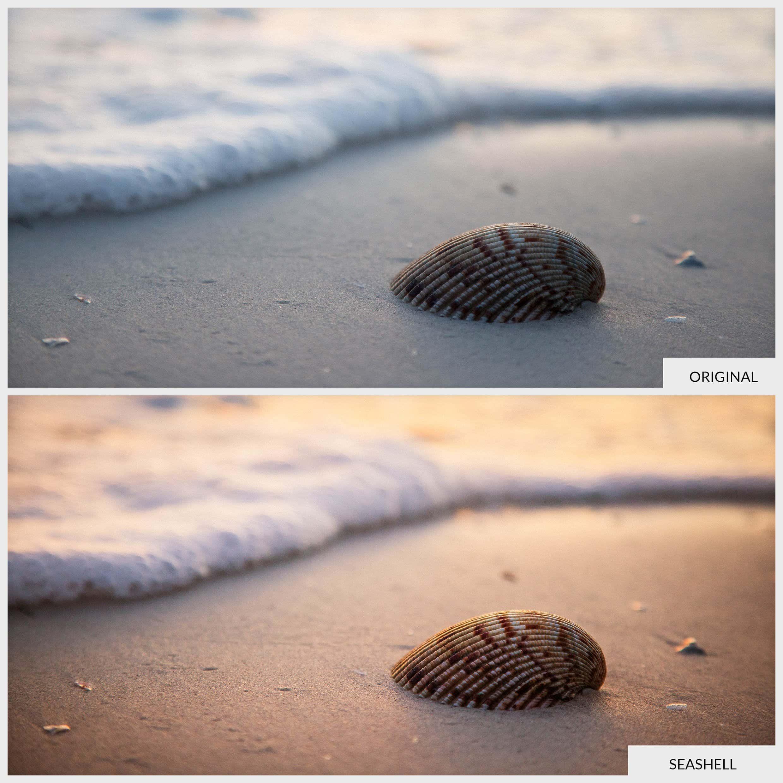 Free Lightroom Preset Sea Shell
