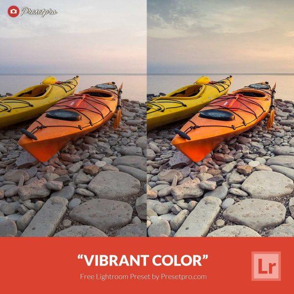 Free Lightroom Preset Vibrant Color