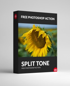 FREE Split Tone