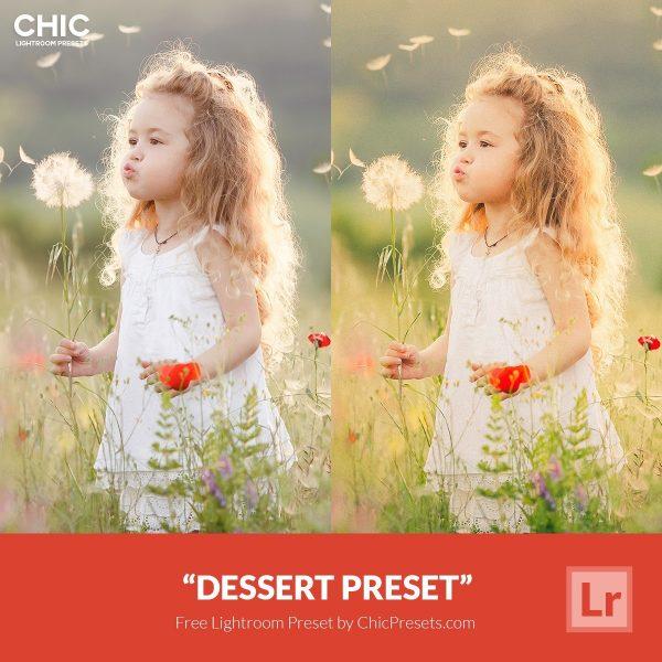 Free-Lightroom-Preset-Dessert