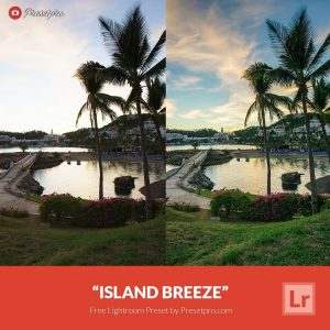 Free-Lightroom-Preset-island-Breeze