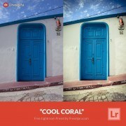Free-Lightroom-Preset-Cool-Coral