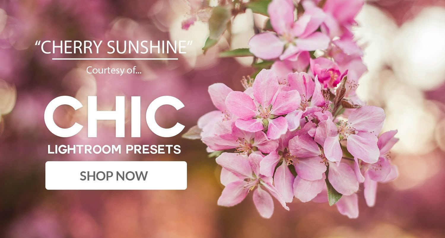 Free Lightroom Preset Cherry Sunshine