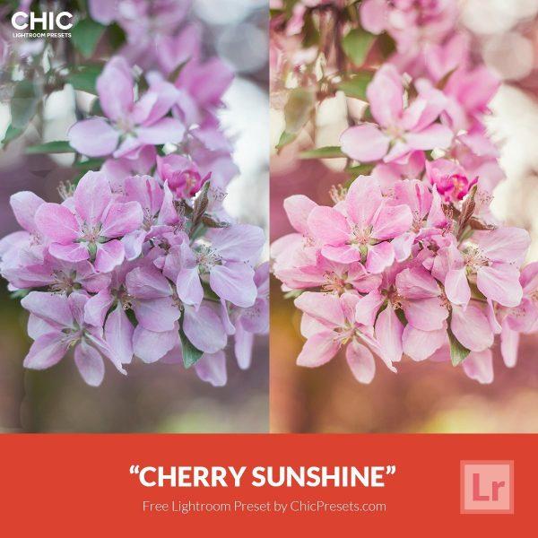 Presetpro-Free-Preset-Cherry-Sunshine