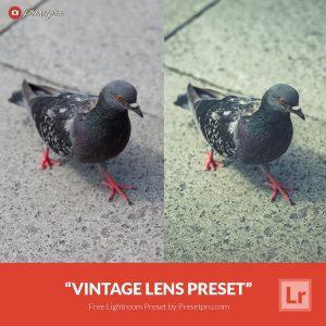Free-Lightroom-Preset-Vintage-Lens