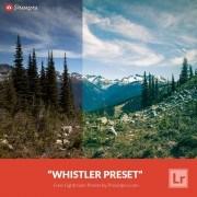 Free-Lightroom-Preset-Whistler